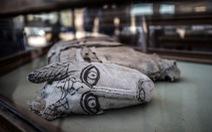 Ai Cập công bố 5 xác ướp sư tử con tìm thấy gần kim tự tháp Giza