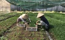 Làm nông nghiệp nhưng không được xây nhà kho để vật tư, sản phẩm