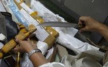 1.000 hung khí đội lốt 'công cụ nhà bếp' chuyển qua đường bưu điện
