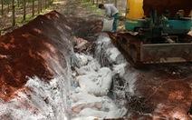 Tiêu hủy hơn 1,6 tấn thịt nhiễm dịch tả heo châu Phi ở Bình Phước