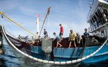 Tuần sau, EC lại đến Việt Nam kiểm tra việc khắc phục 'thẻ vàng' thủy sản