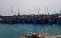 Ngư dân vào các âu tàu ở Trường Sa để tránh bão số 6