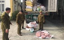 Bắt giữ xe chở 11 tấn nội tạng heo bốc mùi từ TP.HCM ra Quảng Ninh