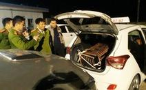 Giữa trận chung kết, thuê taxi chở gấu nặng 140kg đi bán bị bắt quả tang