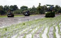 'Mở đường' cho nông dân làm giàu