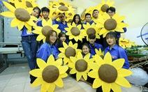 Hoa hướng dương 'khổng lồ' giữa mùa đông Hà Nội