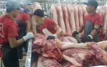 Giá heo vượt giá bò, người mua 'xanh mặt'