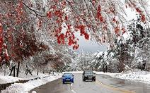 Tận hưởng mùa tuyết xứ Hàn