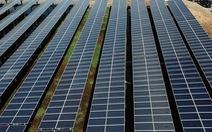Lo điện mặt trời tiếp tục 'hạ giá', 27 nhà đầu tư đồng loạt gửi kiến nghị tới Thủ tướng