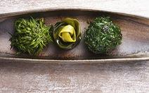 Những thực phẩm hỗ trợ ngừa ung thư được ưa chuộng tại Nhật
