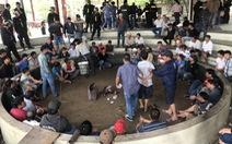 Tạm giữ hình sự 13 người trong vụ 125 người đá gà ăn tiền tại Phú Yên