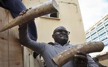Uganda bắt hai người Việt buôn lậu ngà voi trị giá hơn 2 triệu đô