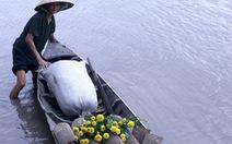 'Về quê ăn tết' lay động hàng vạn trái tim Việt ngày tết