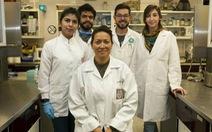 Tìm ra cách loại bỏ triệt để virus gây bệnh sùi mào gà
