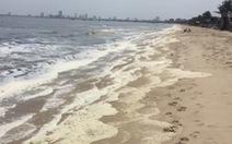 Nước biển bất thường ở Đà Nẵng: Có 2 thông số vượt tiêu chuẩn