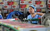 Cục Thuế TP báo cáo tiếp Tổng cục Thuế vụ truy thu thuế Sabeco, Unilever