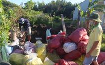 Doanh nghiệp chôn trái phép hơn 1,5 tấn thuốc bảo vệ thực vật 'quá đát'