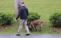 Đặc vụ Mỹ dắt chó nghiệp vụ lùng sục quanh khách sạn JW Marriott