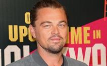 Ông Putin, Leonardo DiCaprio giải cứu gần 100 cá voi bị ngược đãi