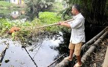 Giám sát việc khắc phục ô nhiễm tại khu công nghiệp Lê Minh Xuân