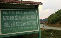 Tây Giang gìn giữ rừng xanh - Kỳ cuối: Lễ 'Tạ ơn rừng' và giấc mơ khu bảo tồn