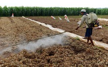 Thuốc diệt cỏ gây ung thư: 'Càng để lâu, càng có tội với dân'