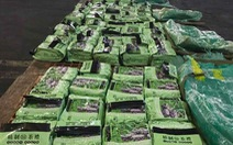 Philippines bắt giữ 276kg ma túy xuất đi từ cảng Cát Lái