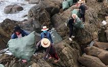 Lãnh đạo Đà Nẵng tuyên dương nhóm bạn trẻ dọn rác ở bãi Đá Đen