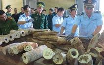 Bắt giữ 9,1 tấn nghi là ngà voi ở cảng Tiên Sa