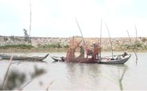 Nhộn nhịp mùa dỡ chà bắt cá ở miền Tây