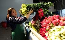 Hoa hồng Đà Lạt tăng giá gấp 16 lần dịp 8-3