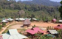 """Tây Giang gìn giữ rừng xanh - Kỳ 2: """"Sống với rừng, chết dựa vào rừng"""""""