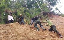 Tây Giang gìn giữ rừng xanh - Kỳ 1: Sáu năm một vụ phá rừng