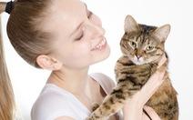 Dị ứng mèo và những điều có thể bạn không biết