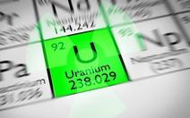 Điều tra học sinh tự chế nguyên liệu hạt nhân để 'bán online'