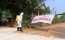Thêm một ổ dịch tả heo châu Phi ở Thừa Thiên - Huế