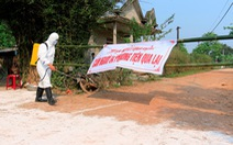 Thừa Thiên Huế phát hiện thêm 3 ổ dịch tả heo châu Phi
