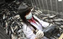 Hàn Quốc kháng cáo thành công Nhật Bản tại WTO vụ kiện thủy hải sản