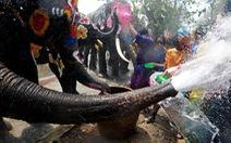 Người Thái chơi đùa với voi, đại chiến súng nước dịp Tết Songkran