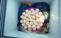 Tàng trữ hàng chục ký thịt và trứng vích