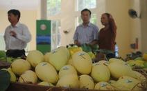 Lô xoài đầu tiên xuất khẩu từ Việt Nam sang Mỹ
