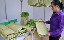 Mỗi năm 1 người Việt vứt 41kg rác nhựa ra môi trường