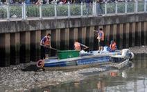 TP.HCM chỉ đạo giảm đàn để phòng cá chết ở kênh Nhiêu Lộc - Thị Nghè
