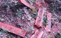 Khởi tố 7 người liên quan vụ phá rừng ở Vườn quốc gia Phong Nha-Kẻ Bàng