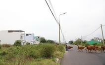 Đà Nẵng: hàng trăm người kêu cứu vì sập bẫy dự án 'ma'