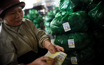 Đà Lạt dán tem chống giả cho 1.500 tấn khoai tây