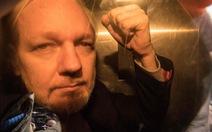 Nhà sáng lập WikiLeaks Assange bị kết án tù 50 tuần