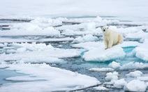 Phun nước biển tạo mây giữ băng hai cực