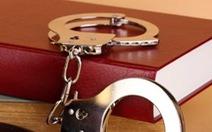 Quan hệ với bạn gái dưới 14 tuổi, một nam thanh niên bị bắt giam