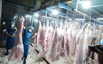 Kiến nghị hỗ trợ cấp đông thịt vì dịch tả heo châu Phi